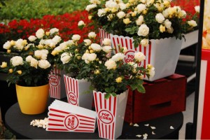Popcorn Drift