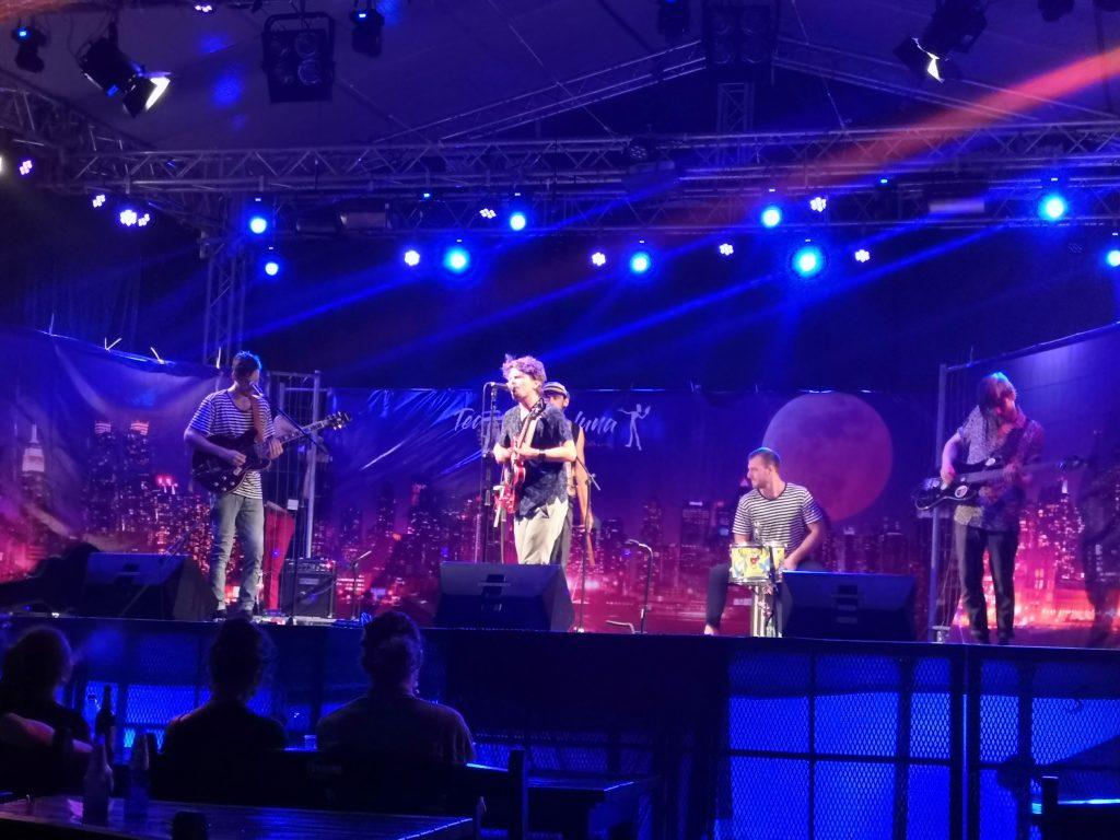 Dl Goe - concert la Club Quantic - Festivalul Teatru sub Luna